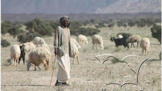 getlinkyoutube.com-لقاء الراعي السوداني الأمين مع صحيفة تبوك السعودية