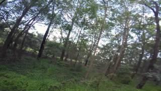 getlinkyoutube.com-5 inch lines (OneShot)