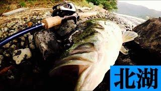 getlinkyoutube.com-【バス釣り】ステルススイマー&ガンティアで琵琶湖おかっぱり【ジャッカル&イマカツ】