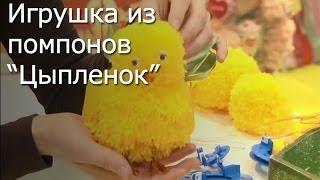 getlinkyoutube.com-Игрушки своими руками: Цыпленок из помпонов мастер-класс