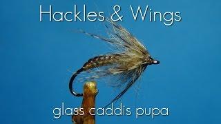 getlinkyoutube.com-Fly Tying Glass Caddis Pupa