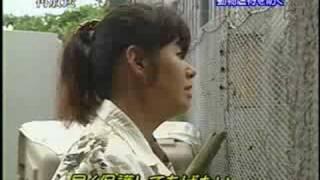 getlinkyoutube.com-詐欺団体による虐待犬を救え!!!
