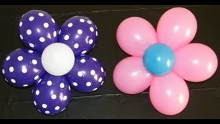 getlinkyoutube.com-Balloon Flower