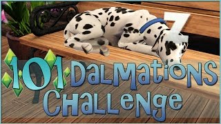 getlinkyoutube.com-Sims 3 || 101 Dalmatians Challenge: First Puppy Adoptions - Episode #27