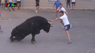 getlinkyoutube.com-3 Toros de Sants de la Pedra 2013 - La Vilavella (Castellon) Bous al carrer [Toros FJGNtv]