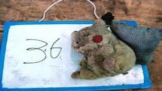 getlinkyoutube.com-【閲覧注意】 富士の樹海(青木ヶ原)で発見した、残された遺留品やメッセージ