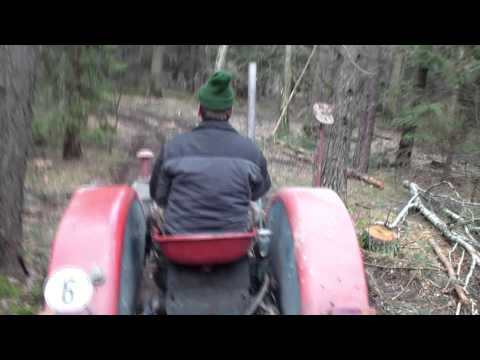 Brennholz holen im Winter -Fetch firewood in winter HD