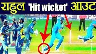 kl rahul hit wicket srilanka / jio xpress news