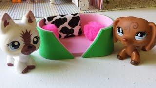 getlinkyoutube.com-How to Make an LPS Dog Pet Bed 2: Doll DIY
