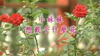 getlinkyoutube.com-四千金 ~ 小黃鸝鳥 / 小妹妹想戴什麼花