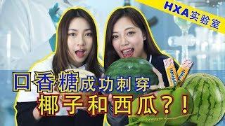 [HXA实验室]一片口香糖就可以刺穿椰子和西瓜!?