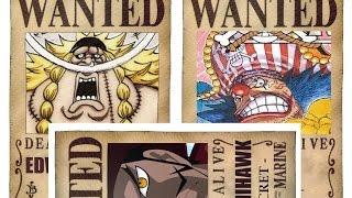 One Piece - Oka Shichibukai - 7 Warlords of the Sea 王下七武海 HD 2016