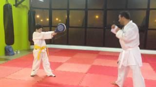Karate Shotokan - geri Waza - treinamento de chutes. Sensei Silvio Menezes 04julho2014.
