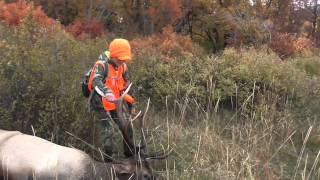 getlinkyoutube.com-David's 2014 Colorado Elk Hunt