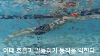 getlinkyoutube.com-평영레슨2 평영 물잡기 기초동작
