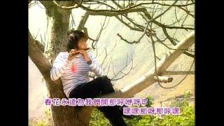 getlinkyoutube.com-[八大巨星] 迎春花 + 万事如意 -- 大胜年  九寨沟的春天 (Official MV)