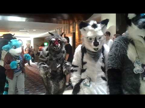 Midwest Furfest 2012 - Fursuit Parade