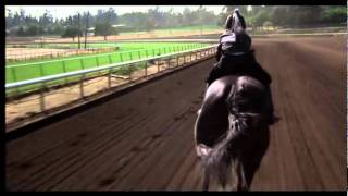 getlinkyoutube.com-The Black Stallion
