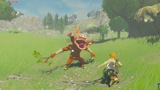 Cemu 1.7.5 ( Wii U Emulator ) / Zelda Breath Of The Wild  ( 4K Resolution )