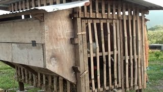 Odorless Chicken Coop with Vermiculture at MADE Farms Philippines