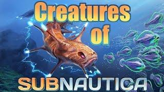 getlinkyoutube.com-Creatures of Subnautica [as of Update 8]