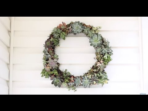 Easy to Make DIY Living Succulent Wreath