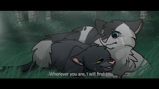 getlinkyoutube.com-Interesting Warrior Cat Facts (part 6)