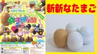 getlinkyoutube.com-斬新なガチャガチャ タマゴッコ 1回100円のユニークなたまごガチャです!