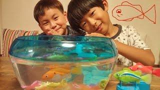 getlinkyoutube.com-마이린의 장난감 놀이 ♡로봇피쉬 어항 꾸미기 세트 금붕어 상어 목욕놀이 Robo Fish Bowl Set | 키즈 크리에이터 마이린TV
