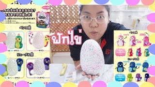 getlinkyoutube.com-มาฟักไข่กัน HATCHIMALS EGG【 うまれて! 】 By Papapha DIY