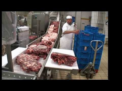 Salami Processing Line with Cutter