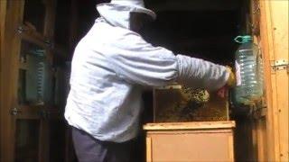 getlinkyoutube.com-противороевые меры в работе. Технологии в пчеловодстве