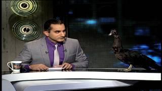 getlinkyoutube.com-البرنامج؟ مع باسم يوسف .. د. توفيق عكاشة مرشحكم للرئاسة