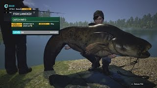 getlinkyoutube.com-Dovetail Games Fishing Monster Catfish 42kg