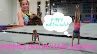 getlinkyoutube.com-Hayley and Annie Back in the Gym | Puppy Not Included | Limited Edition Leo Pre Sale | Acroanna