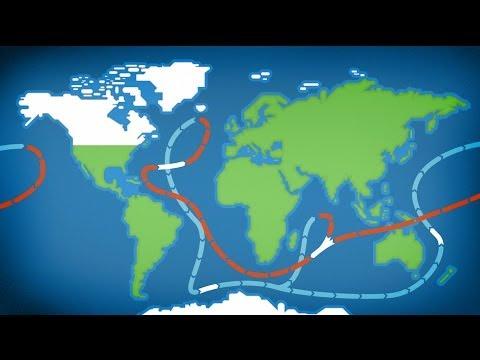 Global Warning En Español de E Force Letra y Video