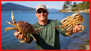 getlinkyoutube.com-Crabbing!!! Catching, Cleaning, Cooking and Eating!!! DMFD