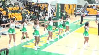 Norfolk State - Cheerleaders 2015