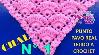 getlinkyoutube.com-Chal a crochet # 2 tejido en punto pavo real a crochet paso a paso - CHAL crocheting