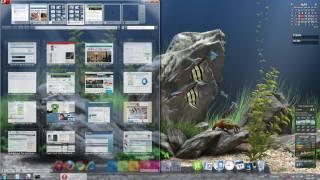 getlinkyoutube.com-Epic Desktop Aquarium - DreamAquarium Background
