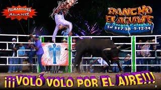 getlinkyoutube.com-¡¡¡VOLÓ VOLO POR EL AIRE!!!  BLACKBERRY VS CACHORRO DE SAN ISIDRO