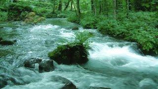 getlinkyoutube.com-【 DNA repair anti-aging】Babble of the river+Solfeggio 528 Hz 若返り・DNA修復・記憶力UP・病気治療 ソルフェジオ528Hz+自然の音