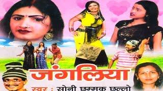 getlinkyoutube.com-DEHATI NON VEG MASTI ||JANGLIYA ||जंगलिया || HOT SEXY DANCE SONI CHHAMMAK CHHALLO BY RATHOR CASSETTE