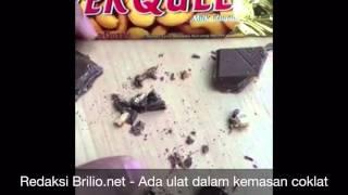 Dikumentasi Pribadi Yulanika Jessica - Pemilik Coklat Silverqueen yang mengeluarkan ulat
