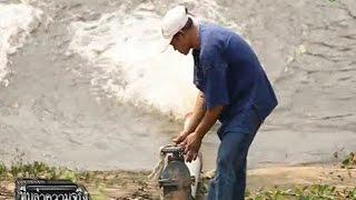 """getlinkyoutube.com-""""กาลักน้ำ""""ภูมิปัญญาชาวบ้านต้านภัยแล้ง"""