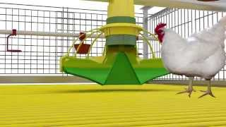 getlinkyoutube.com-Cage Systems for broilers growin. Feeding system KoChibo