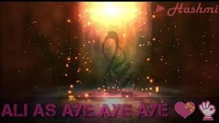 Zamin Ali qaseeda ALI AAE (Lyrics version)