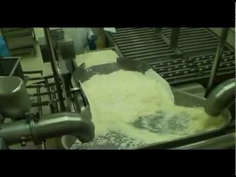 Haloumi cheese production line