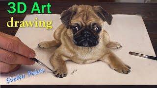 getlinkyoutube.com-3D Drawing of sweet Pug Dog│Trick ART speed painting