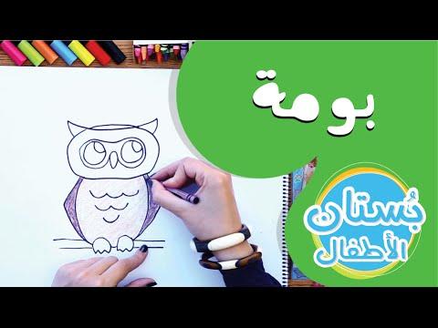 سلسلة رسمة ومعلومة - ح13: كيف أرسم بومة